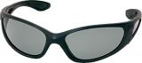 Brille Polarisationsbrille Molde grau, bernstein, gelb
